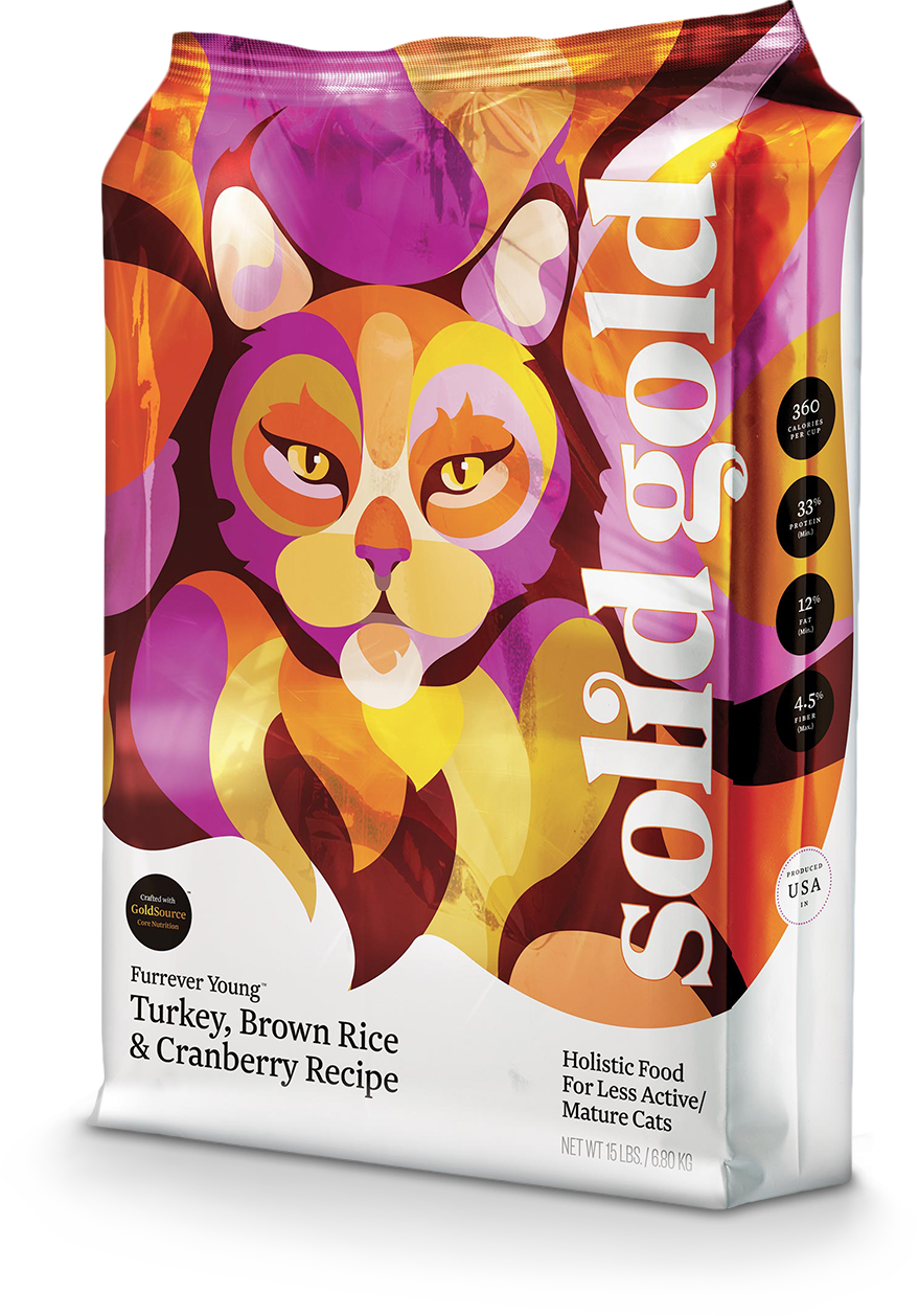 Solid Gold-furrever-young cat Senoir HT Turkey