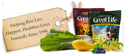 Pet Fare Dog Food Review