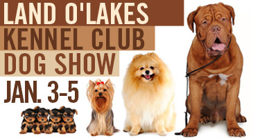 Land-O-Lakes Kennel Club Show, St Paul, MN 2014