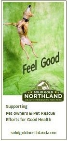 Solid Gold Northland banner