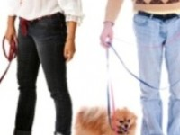 pet-owners1